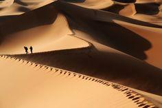 Sahara Walks