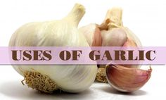 Discover little-known health and beauty uses of garlic to make use of this herb, more than just as a common spice in the kitchen