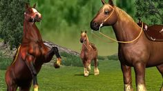 Finger Family Rhymes for Children   3D Horse animation Rhymes for kids song
