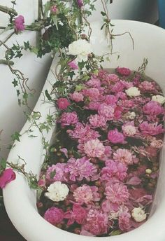 Flowers on We Heart ItFlorez.