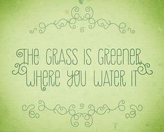 Sunny Saturday: Watering Your Own Grass. Are you watering your own grass or are you trying to leap the fence to different pastures? You have the power to make your side of the fence beautiful and full of happiness no matter how dead the grass has become. It is in your control to revive your life. What you need is already with you and within you.