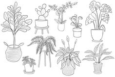 Cute Coloring Pages, Adult Coloring Pages, Free Coloring, Doodle Drawings, Easy Drawings, Plant Sketches, Easy Doodle Art, Background Drawing, Plant Drawing