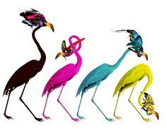 Andy Audubon CMYK by Kristjana S Williams   Prints & Limited Edition Art at Scream Editions
