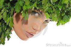 Μαϊντανός για λαμπερά και απαλά μαλλιά! - Νέα Διατροφής Parsley, Kai, Herbs, Health, Health Care, Herb, Salud