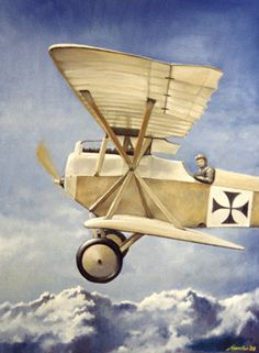 WWI Austro Hungarian Starstrutter Biplane by Robert Mascher Fine Art Print