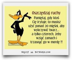 Polish Memes, Weekend Humor, Motivational Quotes, Inspirational Quotes, Keep Smiling, Wtf Funny, Funny Moments, Really Funny, Sentences