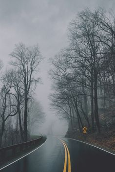 Everything Autumn-Wet Autumn Road