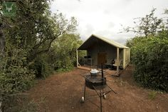 Spekboom tented camp in Addo.