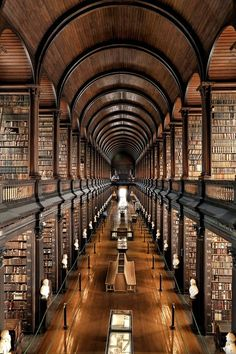 I love this stunning library at Trinity College in Dublin. I've strolled through it many times during my trips to Dublin. The Long Room a the Old Library. If you ever get to Dublin, don't miss this jaw dropping piece of architecture and history. Book Of Kells, World's Most Beautiful, Beautiful Places, Absolutely Gorgeous, It's Wonderful, Hello Beautiful, Beautiful Boys, College Library, Dublin Library
