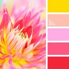 алый, бежево-красный, бордовый, желтый, желтый и красный, желтый и оранжевый, кармазин, красный, красный и желтый, красный и оранжевый, нежный цвет маджента, оранжевый и желтый, оранжевый и красный, оранжевый и фиолетовый, оттенки