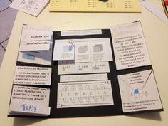 Lap book con frazioni e numeri decimali