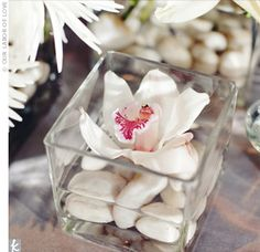 A Vintage Modern Wedding - Delicate cymbidium orchids floated above smooth pebbles in short, square vases.