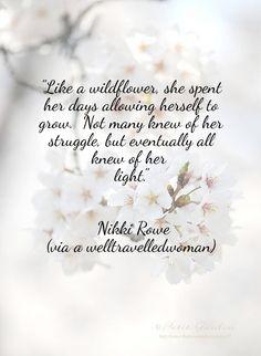 Like a Wildflower | Winterberry