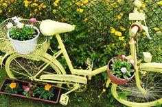 garden DIY