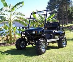 Golf cart idea  www.SweetSouthernLiving.com