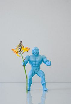 Flower power - with old action figures