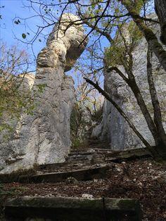 #foret #nature #paysage #rocher #montagne #randonnée pédestre #marche Plants, Paths, Pathways, Walking, Drill Bit, Mountain, Plant, Planets
