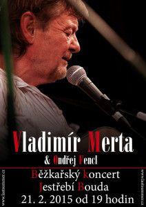 Běžkařský koncert na Jestřebí boudě - Vladimír Merta duo
