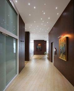 couloir avec sol en bois blanchi, murs en bois foncé et plafond étoilé