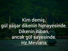 Tumblr Quotes, Meaningful Words, Cool Words, Messages, Sayings, Allah Islam, Sufi, Nirvana, Istanbul