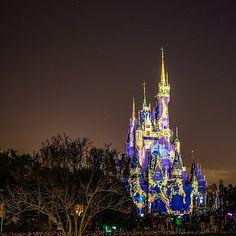 Cinderella Castle Tangled  View the full versions of my photos at www.Facebook.com/Disneyphotosnapper  #waltdisneyworld #waltdisney #disneyworld #wdw #Disneyparks #Travel #Love #Photooftheday #Picoftheday #Fun #Disney #Canon #fd101look #Disneygram #latergram #tiggerlovesdisney #longexposure #DisneyPhotoSnapper #MickeyMouse #POTD #Mickey #cinderellacastle #magickingdom