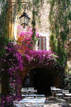 Sweet Smelling Cafe, Bormes les Mimosas, Provence, France