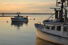 Chatham Fish Pier #travel #massachusetts Credit: Brian Morris