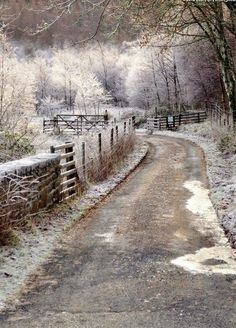 stunning scene, would love to have a cabin back on that road & get snowed in.