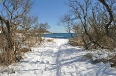 Fishers Island in winter