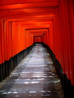 Torii Road by Kyoto Japan