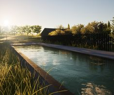 Esjay Landscapes + Pools | Ocean Grove landscape design Landscape Design Melbourne, Pool Landscape Design, Landscaping Melbourne, Landscaping Company, Pool Landscaping, Landscape Architecture, Residential Landscaping, Coastal Gardens, Dream Pools