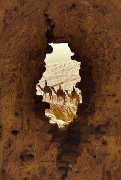 window, arabian nights, camels, travel, africa, deserts, egypt, bucket lists, eye