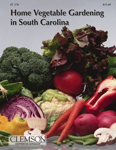 Most popular of all Clemson University publications, the Home Vegetable Gardening Manual includes sections on garden planning, soil preparation, recommended varieties, planting, fertilization, irrigation and pest identification. Intensive gardening methods, such as container gardening or raised-bed gardening are covered. $15 https://shopping.clemson.edu/index.php?main_page=product_info_id=246