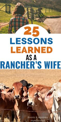 25 lessons learned as a rancher's wife. How being married to a rancher has taught a lot of life lessons. 25 lessons learned as a rancher's wife. How being married to a rancher has taught a lot of life lessons. Lessons Learned, Life Lessons, Raising Farm Animals, Farm Lifestyle, Urban Farmer, Pet Chickens, Skills To Learn, Farms Living, The Ranch