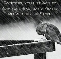 Sometimes, you just have to bow your head, say a prayer, & weather the storm. #Faith
