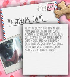 Valentine's Day Note for Ganjah Juliá from Lilian de Juliá on 3MillionDogs.com