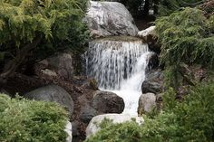 Waterfall at Dow Gardens in Midland Michigan, another wonderfull place to visit!!