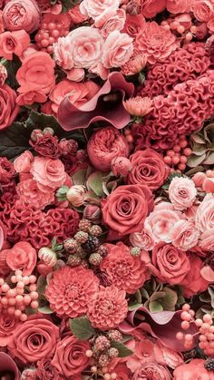 Coral flowers for Summer bouquet