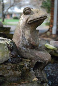Frog meets Frog?