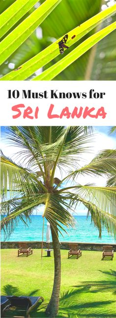 10 Travel Tips You Must Know Before Traveling to Sri Lanka!