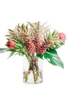 Nat rlich sch ne gl ckblicke f r mich winterliche pflanzengr e f r dich deko pinterest - Hanf zimmerpflanze ...