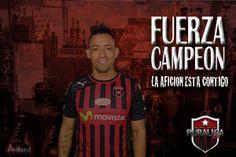 Fuerza Camilo