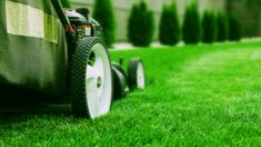 What is on-demand lawn mowing? If you are not familiar with these terms, then let me shed some light on this issue. On-demand means whenever you need us to give us a call, and we will be there to take care of your lawn maintenance needs. No Mow Grass, Mowing Services, Yard Maintenance, Take Care Of Yourself, Lawn Mower, Shed, Lawn Edger, Grass Cutter, Barns