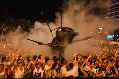 Invasion of Ants at Ushuaia Ibiza!