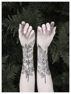 fern tattoos