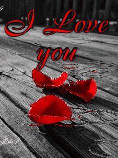 Eu te amo... Nunca disse que era a pessoa certa para você apenas olhei em teus olhos com o coração aberto com a alma cheia de sonhos e com plena certeza pude te dizer> você é a pessoa com a qual eu quero passar o resto da minha vida...E U T E A M O!!! Samy...eterna apaixonada