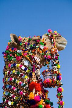 Traditional decorated camel for the Desert Festival in Jaisalmer-Rajasthan, India, held in January or February every year on 'Purnima' or the full moon day ~ Anupama Kinagi