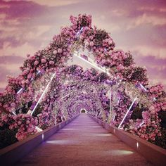 """How is this even possible 😍 Wedding goals -""""A truly beautiful floral mesmerizing pathway leading the guests to the engagement reception by 💗"""" Wedding Entrance, Entrance Decor, Wedding Mandap, Wedding Receptions, Bouquet Wedding, Outdoor Wedding Decorations, Backdrop Decorations, Lebanese Wedding, Pathways"""