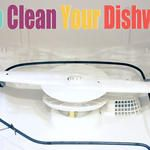 How To Clean Your Dishwasher {Best Of Jillee}  One Good Thing by Jillee  -  she looks like Heloise and has good tips too!