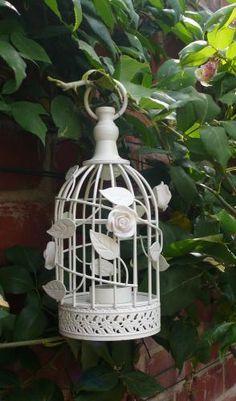 rose vine birdcage